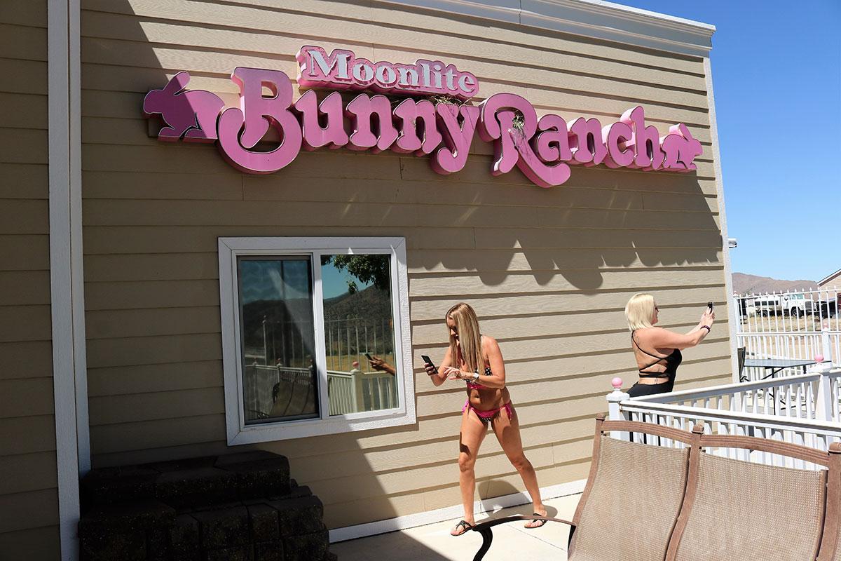 Bunny-Ranch-Pokemon