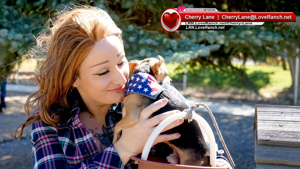 The Cherry Lane Story